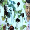 Alisher Uzoqov - Oshiq yurak